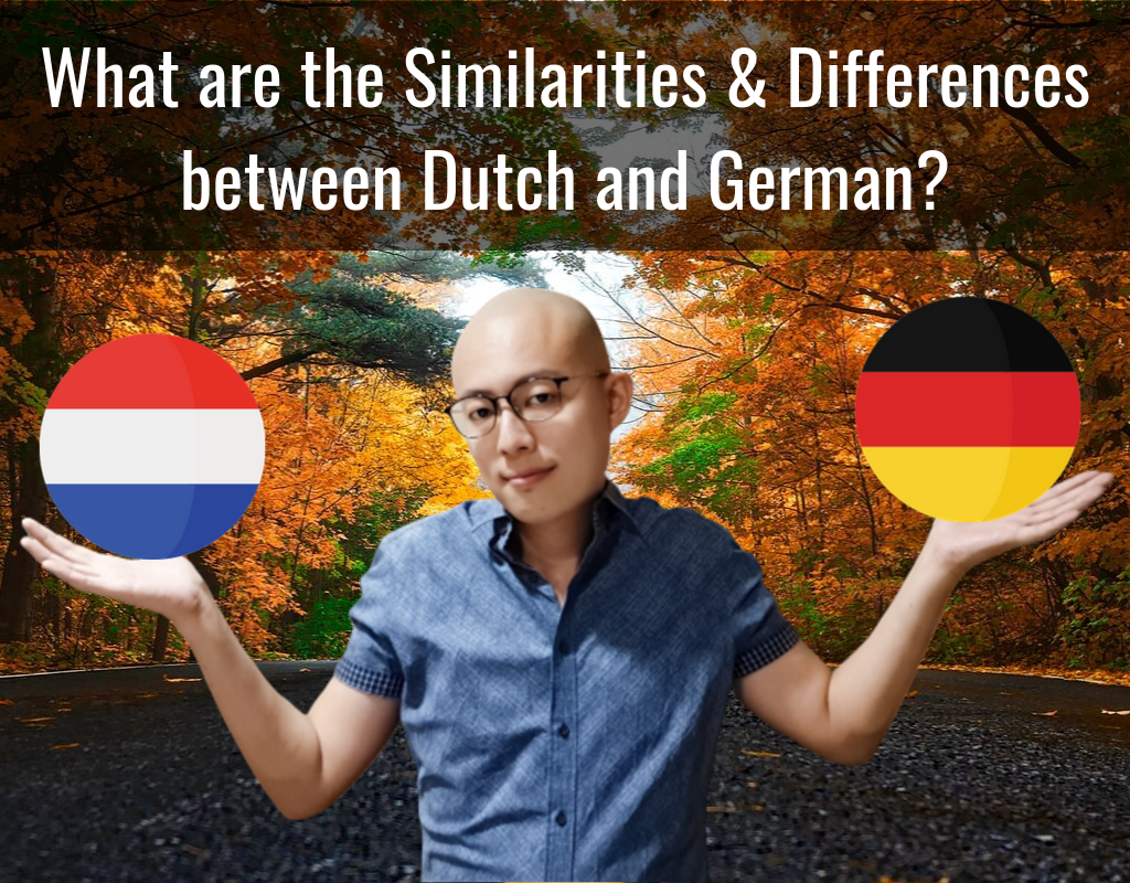 What are the Similarities and Differences between Dutch and German?